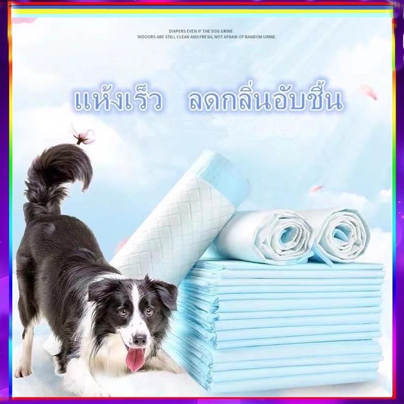 Pp A5 แผ่นรองฉี่ Cocoyo ไม่มีแพ็ค แผ่นรองฉี่สุนัขและแมว บ๊อกด็อก และ จิจิโกะ ดูดซับกลิ่นและข Nbs.