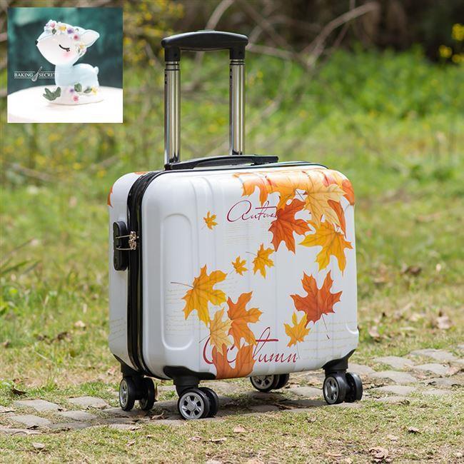 กระเป๋าเดินทางน่ารักกระเป๋าเดินทางใบเล็กกระเป๋ารถเข็นขนาดเล็กนักเรียน 16 นิ้วกระเป๋าเดินทางรหัสผ่าน 14 นิ้วสำหรับผู้ชาย