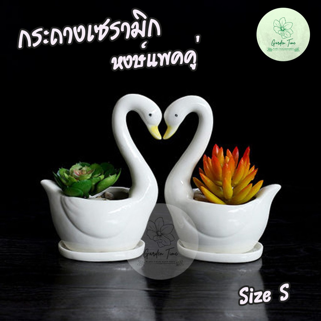 พร้อมส่งจากไทย กระถางเซรามิกหงษ์แพคคู่ ใส่กระบองเพชร กระถางต้นไม้ กระถางจิ๋ว กระถางไม้อวบน้ำ Cactus Succulent กระถางเล็ก