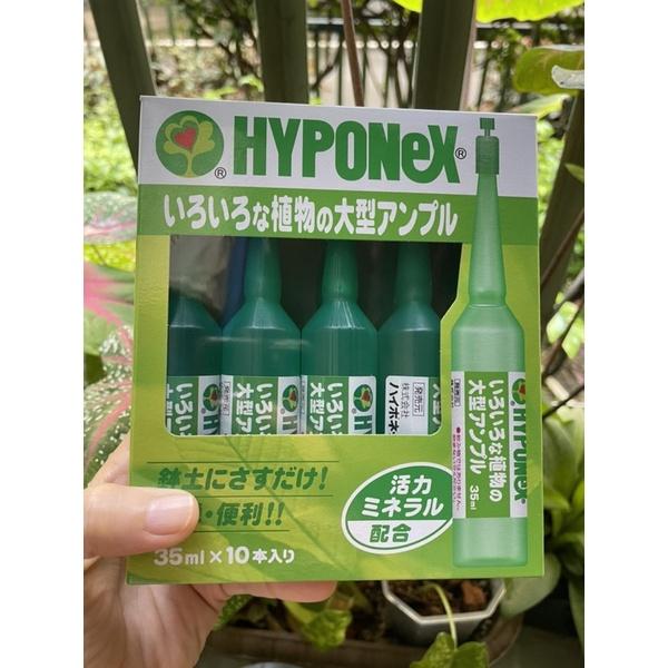 ถูกสุด ‼️Hyponex ampoule ปุ๋ยตัวดังนำเข้าจากญี่ปุ่น
