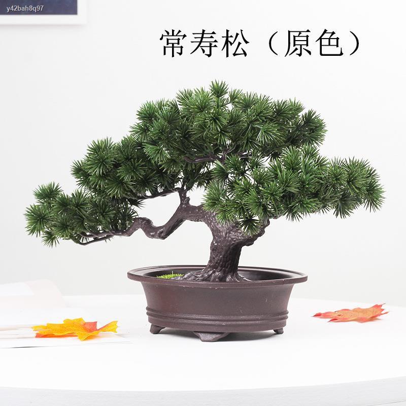 การจำลองพันธุ์ไม้อวบน้ำ❦﹉ไม้สนจำลอง เข็ม Thuja ปลอมดอกไม้ pine tree potted Podocarpus สาขา props ใบปลอมใบยินดีต้อนรับ bo