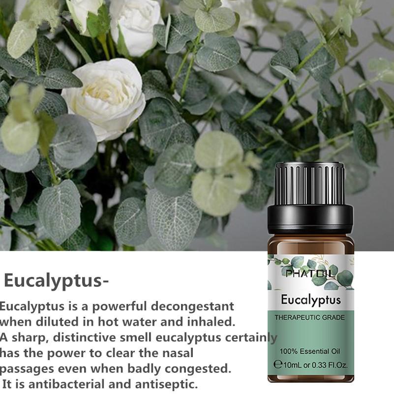 d&d crucial skin oils llc