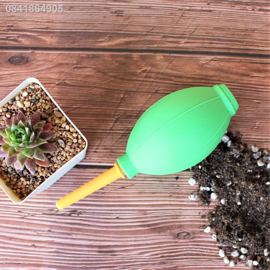 ♨♂ที่เป่าลม High Quality Air Blower G Succulents กุหลาบหินนำเข้า ไม้อวบน้ำ