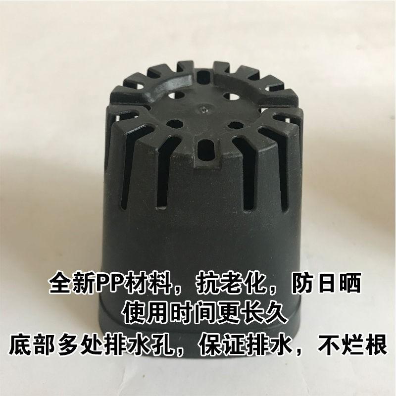 ♦[สินค้าใหม่ขายร้อน] สี่เหลี่ยมสีดำขนาดเล็ก / ไม้อวบน้ำกระถางสี่เหลี่ยมขนาดเล็กกระถางดอกไม้พลาสติกหม้ออนุบาลชามโภชนาการ