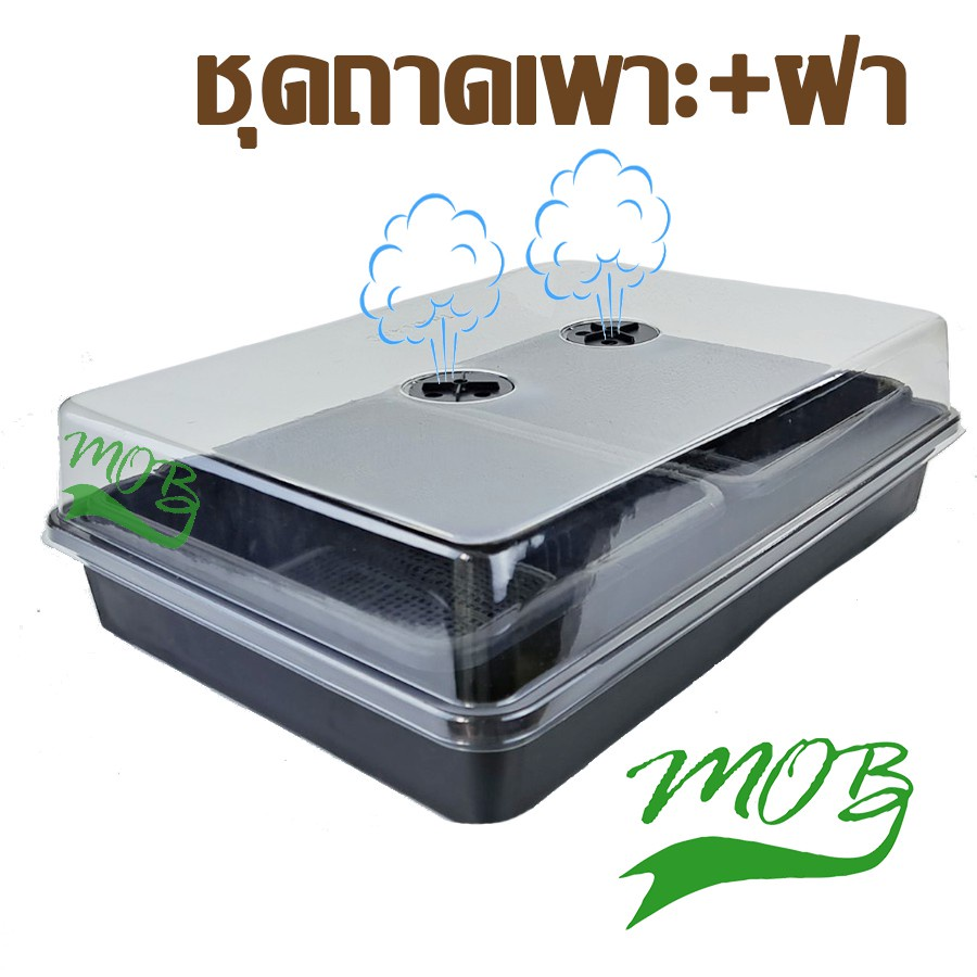 MOB กล่องเพาะเมล็ด กล่องไดโซะ ชุดถาดไดโซะพร้อมฝาอบ ฝาครอบ สำหรับ เพาะเมล็ดแคคตัส กระบองเพ็ชร ปลูกผักได้ ป้องกันนก