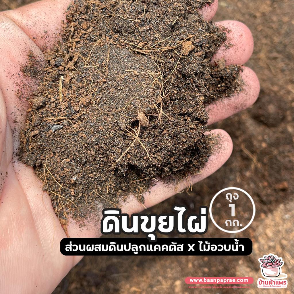 ถุงละ 1 กก. ดินขุยไผ่ ราชบุรี ส่วนผสมดินปลูกแคคตัส&ไม้อวบน้ำ