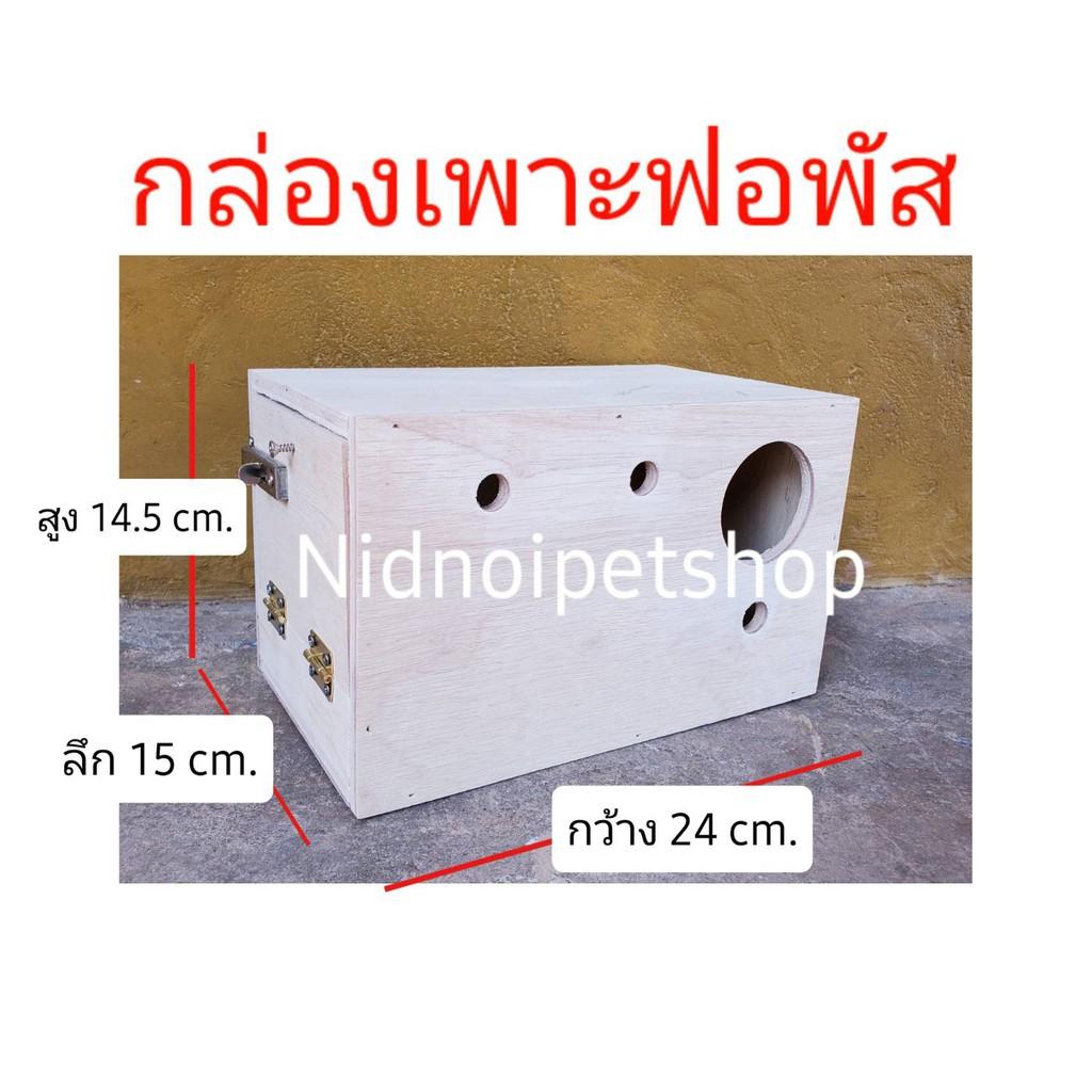 กล่องเพาะนก(กล่องฟอพัส+นกระจอกชวา)รังเพาะนก กล่องนอน หงส์หยก เลิฟเบิร์ด ค็อกคาเทล ฟอพัส ราคาโรงงาน/สินค้าพร้อมจัดส่งจ้า