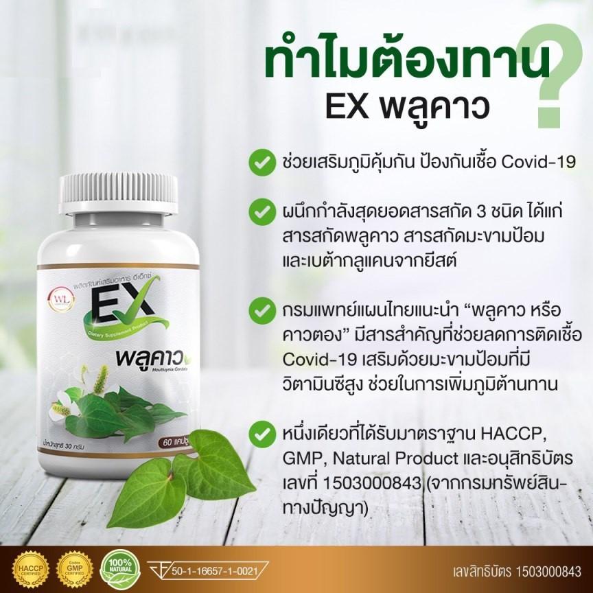พลูคาวEX ขนาด 60 แคปซูล | Shopee Thailand