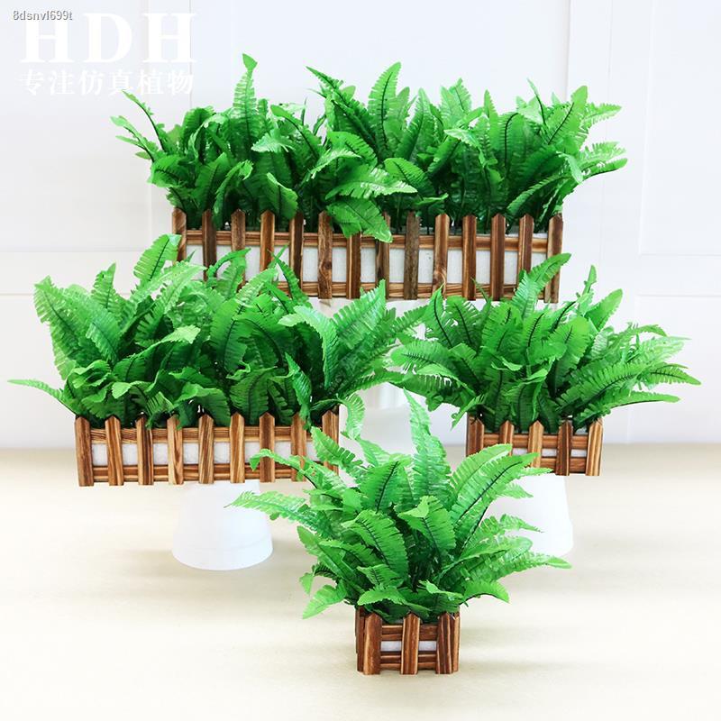 การจำลองพันธุ์ไม้อวบน้ำ✉รั้วไม้จำลอง พืชสีเขียว กระถางต้นไม้ปลอม กรีนดิลล์ ห้องนั่งเล่น ธรณีประตู ชุดตกแต่ง พลาสติก ดอกไ