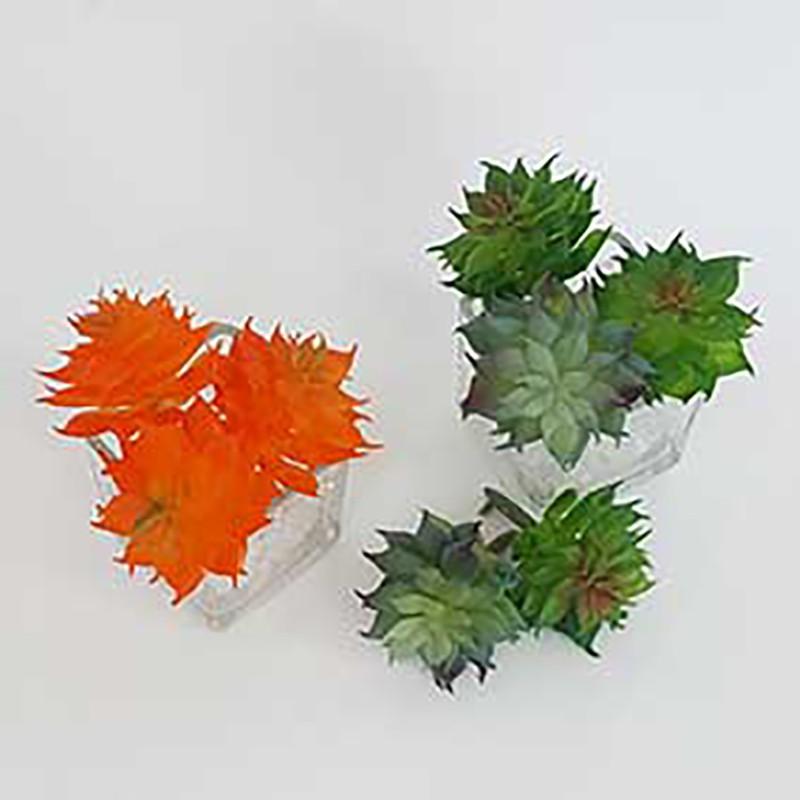 กระปุกออมสินดอกไม้ปลอม☏℡❁PhaFlower : ไม้อวบน้ำปลอม กุหลาบหินจิ๋ว / แคคตัส (Cactus) กุหลาบหินประดิษฐ์ ต้นไม้ปลอม ดอกไม้