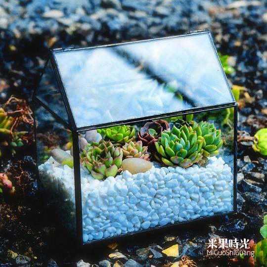 กระถางใส่ต้นไม้ ดอกไม้ พืชอวบน้ำ รูปทรงกระท่อม แบบแก้ว