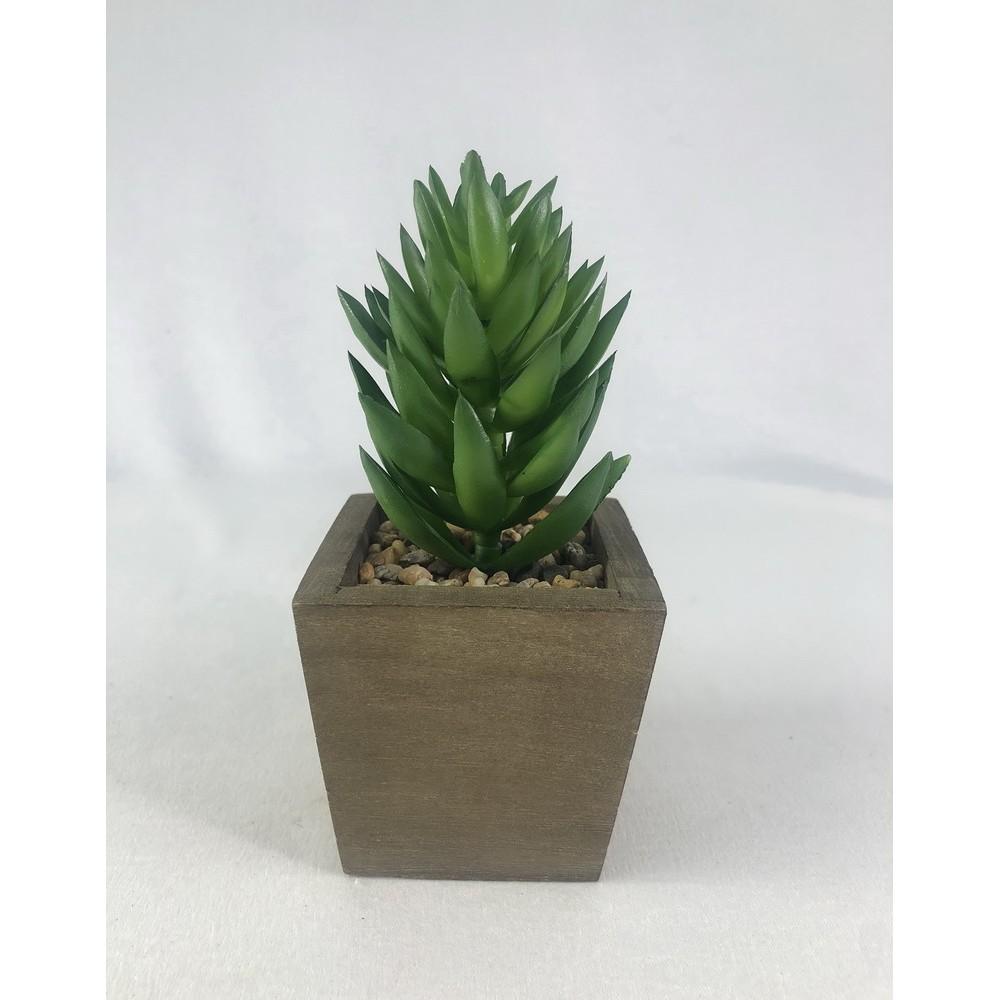 ไม้อวบน้ำ พืชอวบน้ำเทียม (เฉพาะหัว ไม่รวมกระถาง) Artificial Succulent plant head (no pot)
