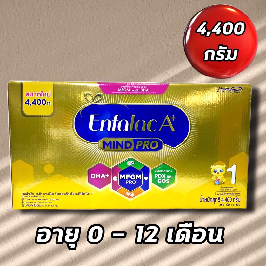 นมผง เอนฟาแล็ค Enfalac A+ เอพลัส สูตร 1 สำหรับเด็กทารก0-12เดือน ขนาด 4400 กรัม ** วันหมดอายุ 27/07/2021**