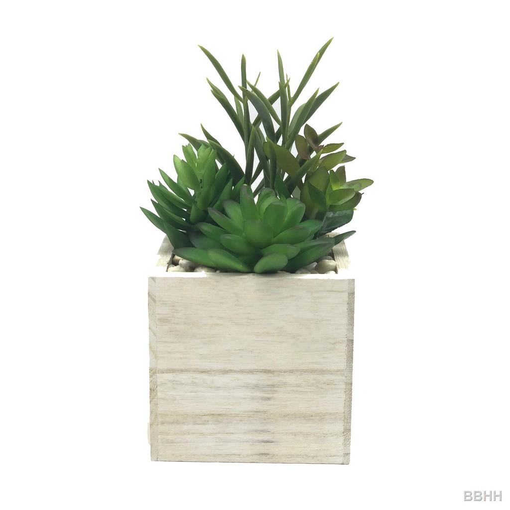 🔥พร้อมส่ง🔥กระถางแคคตัส กุหลาบหิน ไม้อวบน้ำปลอม ต้นไม้ประดิษฐ์จัดในกระถางไม้สี่เหลี่ยมสีขาว สำหรับวางประดับตกแต่ง