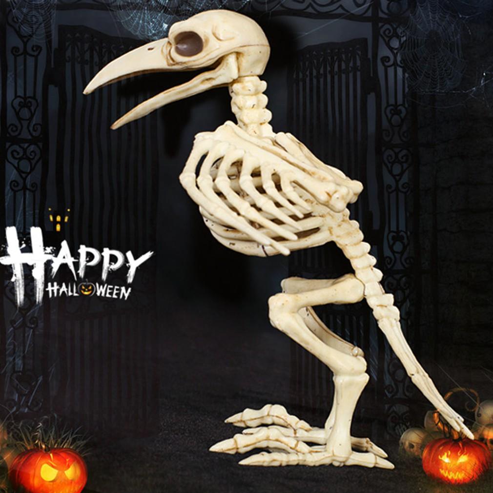 Skeleton Raven 100/% Plastic Animal Skeleton Bones Horror Halloween Decoration