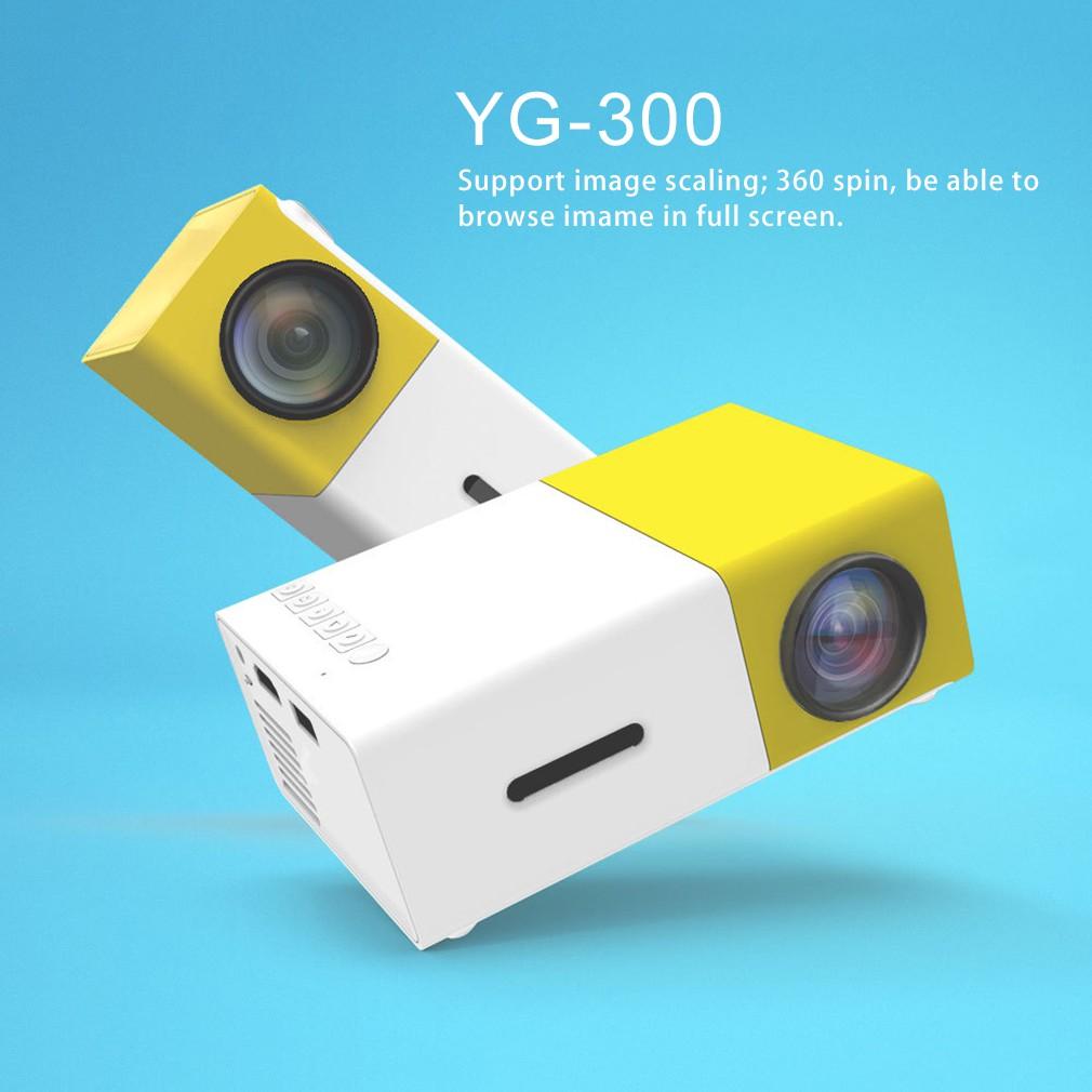 YG300