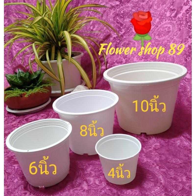 🌄กระถางต้นไม้⛱️พลาสติกสีขาวแพ็คละ 3 ใบขนาด4,6,8,10นิ้ว กระถางดอกไม้ กระถางกระบองเพชร กระถางไม้อวบน้ำ