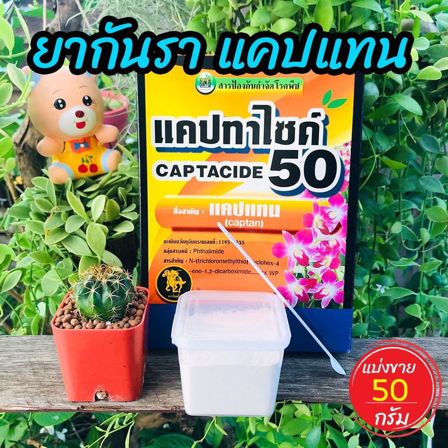 ยากันราแคปแทน (Captan - Captacide 50) ราในกระบองเพชร ไม้อวบน้ำ แคคตัส ไม้ประดับ ยาเพาะเมล็ด ฆ่าเชื้อราในดิน แบ่งขาย 50 g