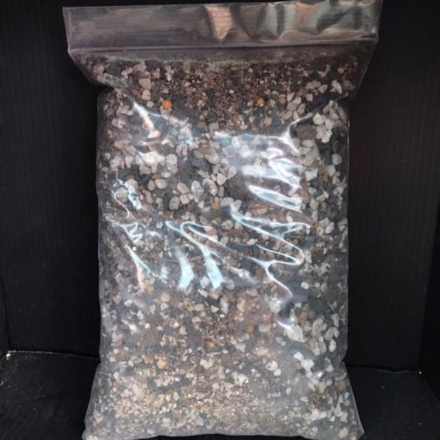ดินปลูกกระบองเพชรและไม้อวบน้ำ