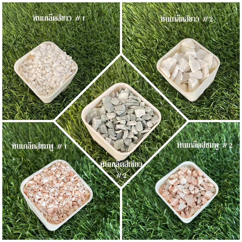หินเกล็ด หินสี หินโรยหน้ากระถาง แคคตัส กระบองเพชร ไม้อวบน้ำ หินตกแต่งสวน หินตกแต่งตู้ปลา