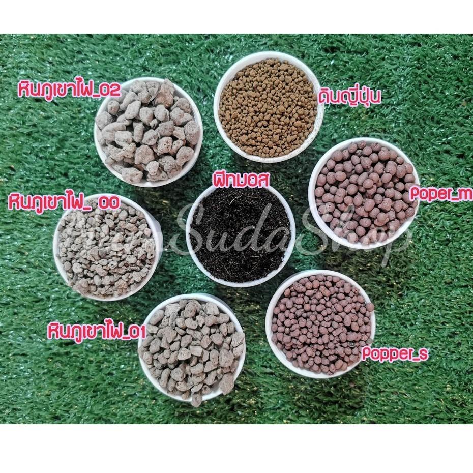 ดินปลูก/ดินปลูกแคคตัสและไม้อวบน้ำ/ใบก้ามปูบด/ปุ๋ยอินทรีย์/ปุ๋ยมูลค้างคาว/หินภูเขาไฟ/Popper/ดินญี่ปุ่น