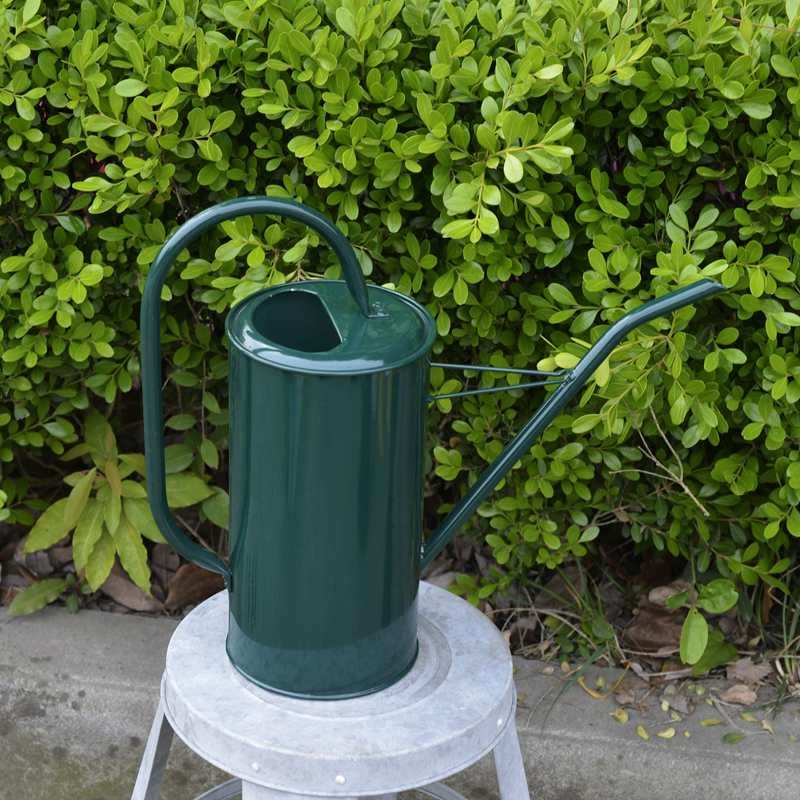 ☤=บัวรดน้ำแคคตัสบัวรดน้ำจิ๋วบัวรดน้ำต้นไม้ขนาดเล็กปากแหลมปากโค้งสิ่งประดิษฐ์รดน้ำไม้อวบน้ำ