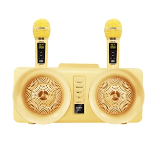 ✉にเสียงก้องในหนึ่งเดียวไร้สายDual speakers, large volume microphones, double wheat duet family ktv wireless Bluetooth co