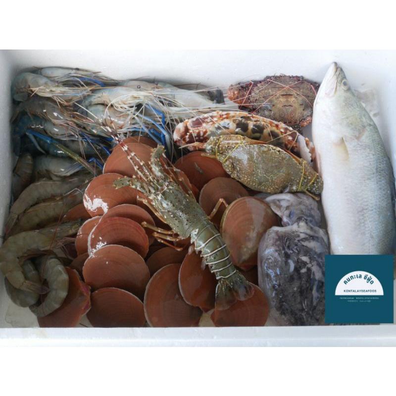 คนทะเล ซีฟู้ดด🧜🏿♀️ กล่องสุ่มอาหารทะเล