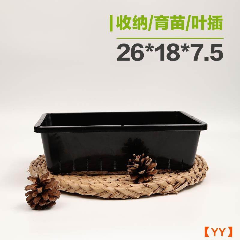 [YY] ถาดเพาะกล้าไม้อวบน้ำกระถางใส่ใบพลา