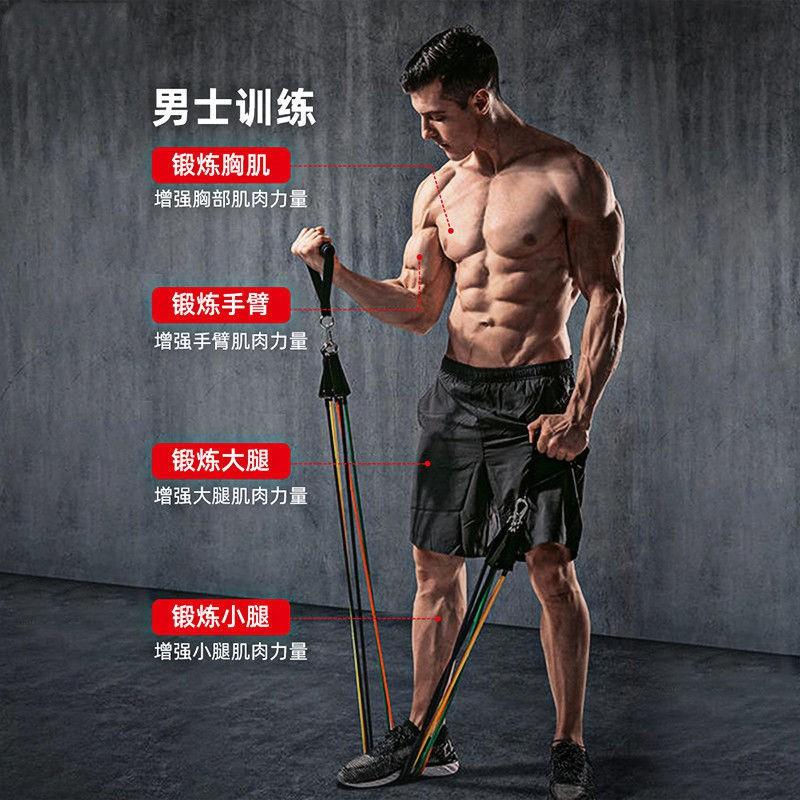 ✼เชือกยางยืดฟิตเนสชายและหญิง เข็มขัดยางยืด กล้ามเนื้อหน้าอก แขน อุปกรณ์ฝึกความแข็งแรง เข็มขัดตึง อุปกรณ์ออกกำลังกาย เชื