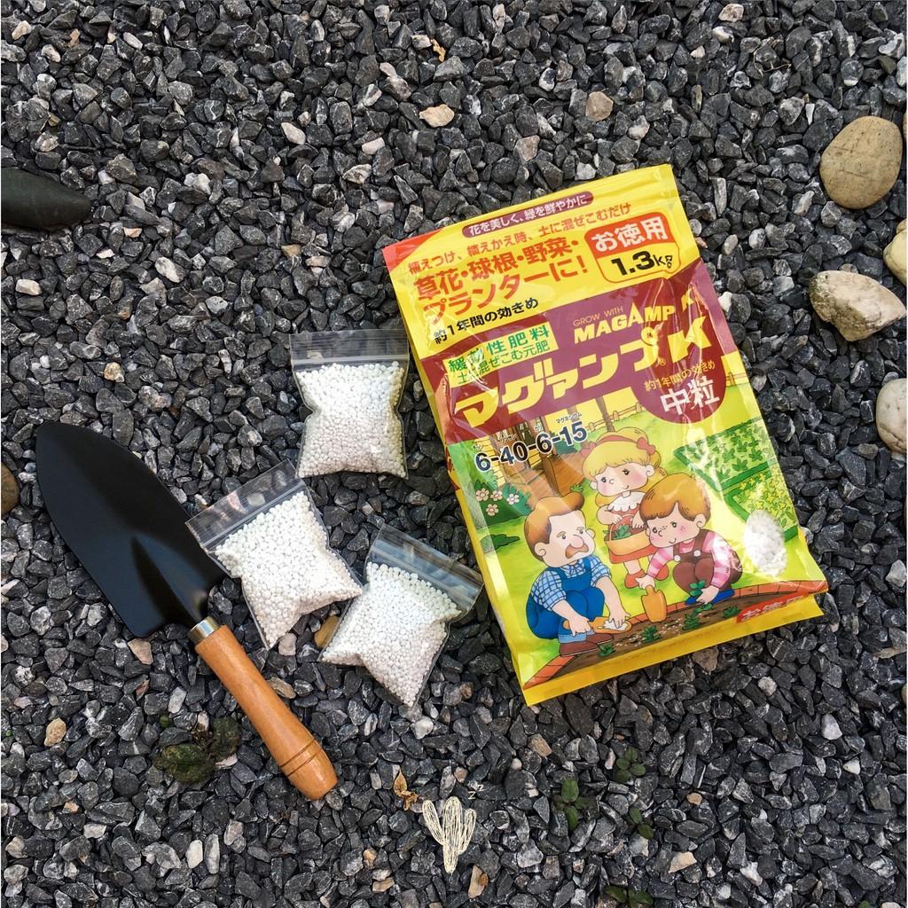 ปุ๋ยญี่ปุ่น*นำเข้า* MagAmp K (マグァンプK) แพ็ค 1.3 kg ปุ๋ยละลายช้าสำหรับกระบองเพชร ไม้อวบน้ำ แคคตัส ฮาโวเทีย กุหลาบหิน บอนไซ