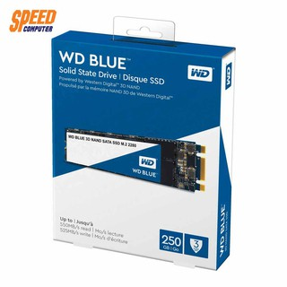 Review WESTERN HARDDISK SSD BLUE WDS250G2B0B-00AS40 250GB M.2 2280 READ 550MB/S WRITE 525MB/S 3Y BY SpeedCom