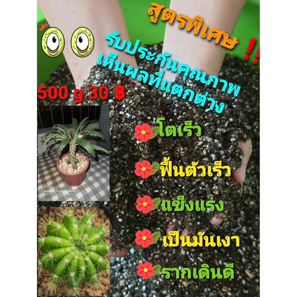 ดินสำหรับปลูกแคคตัส กระบองเพชร (Cactus) ไม้อวบน้ำ (Succulents) 500 กรัม 30 บาท