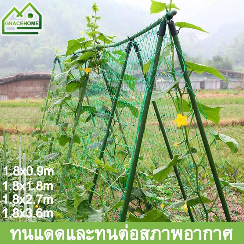 ตาข่ายปลูกพืชผัก ค้างปลูกผัก อวนปลูกผัก ตาข่ายอวน ค้างแตง ไม้เลื้อย คุณภาพดี  เน็ตตาข่ายสี่มุม ตาข่ายสำหรับพืชไม้เลื้อย