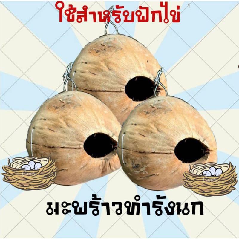 บ้านนก บ้านเพาะนก กล่องเพาะนก ลูกมะพร้าวแห้งทำบ้านนก(สำหรับนกฟักไข่)