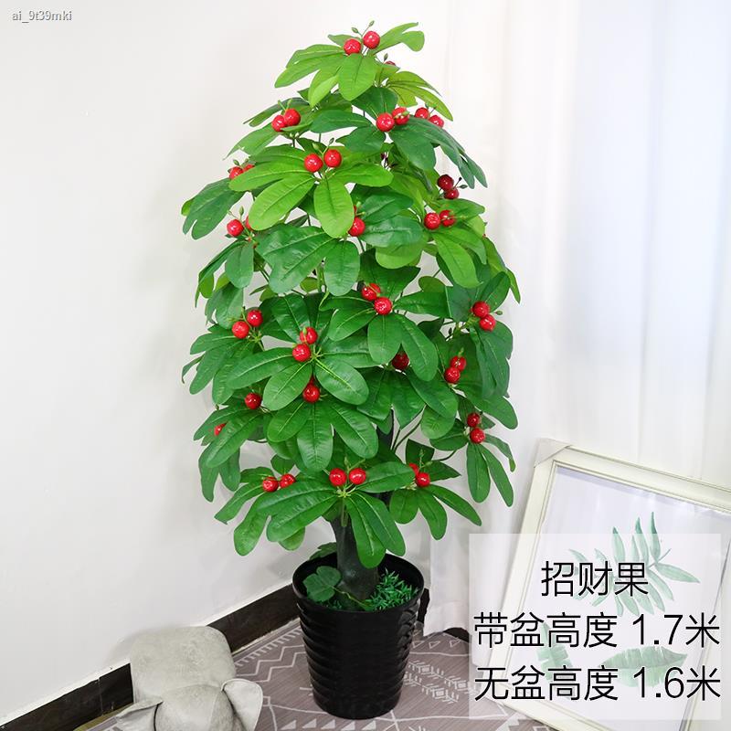การจำลองพันธุ์ไม้อวบน้ำ✶﹉ต้นไม้ปลอมปลอมดอกไม้โชคดีผลไม้ดอกพีชจำลองต้นไม้ปลอมกระถางห้องนั่งเล่นขนาดใหญ่ในร่มบอนไซตกแต่งพื