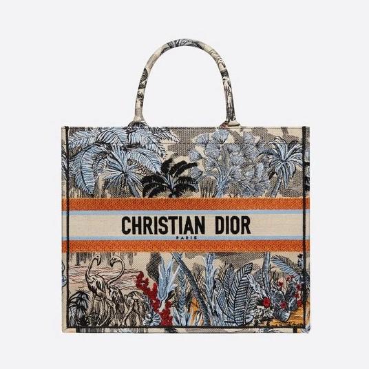 Dior Book Tote  Embroidered Canvas Bag Orange